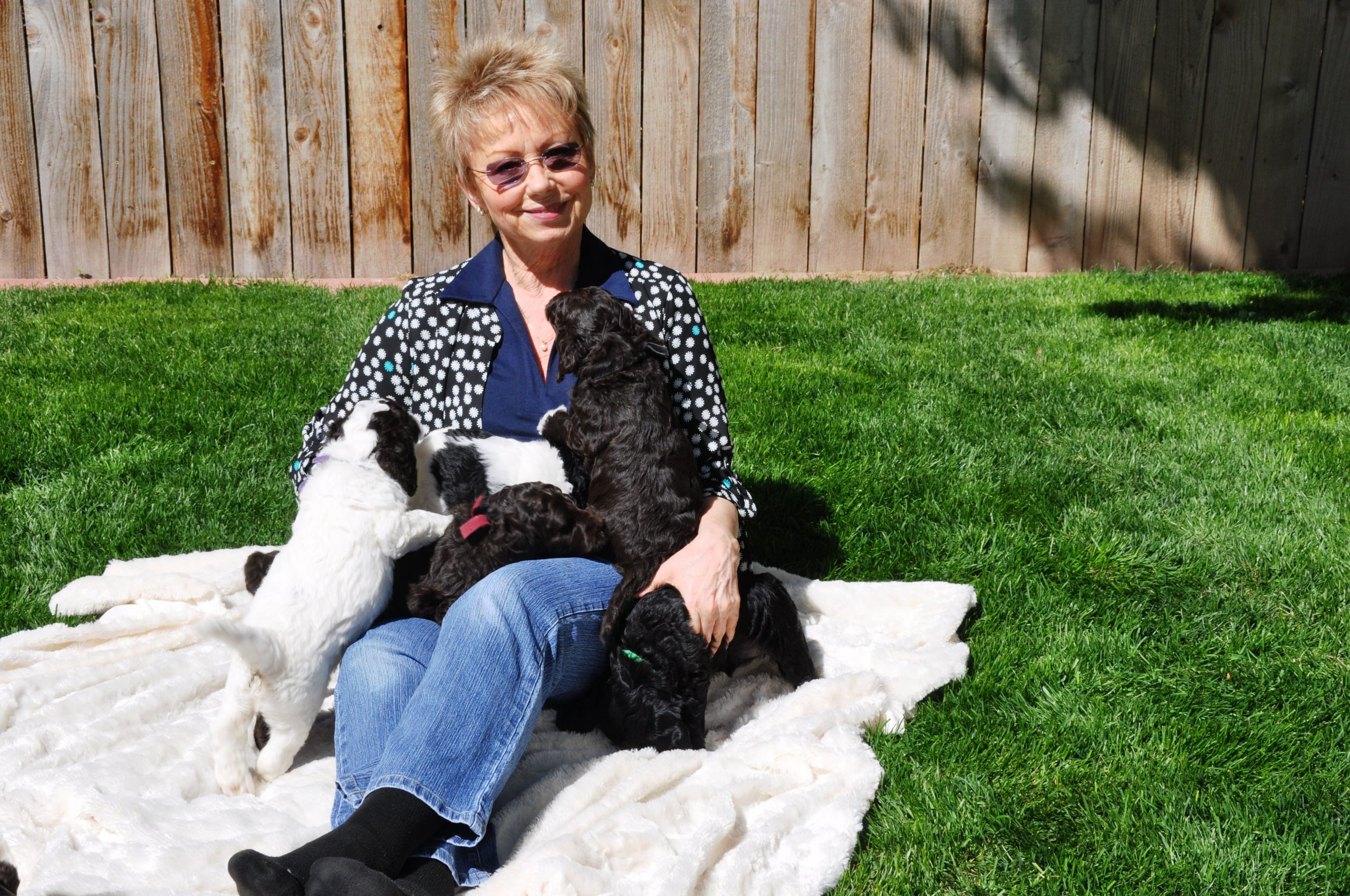 Carol with Zadie Pups 1st Outing