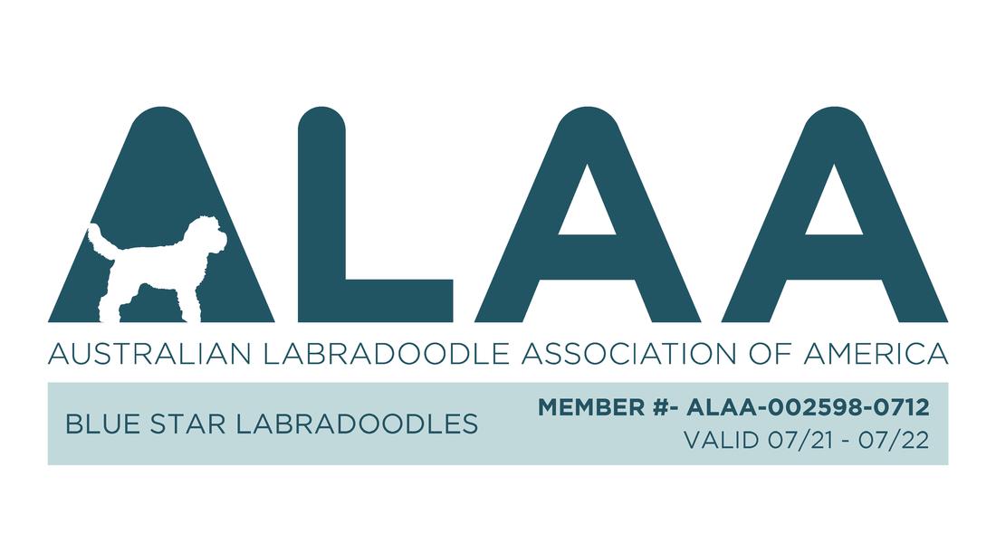 Australian Labradoodle Club of America Member Logo